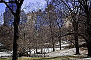Landscapes Photo Prints - Scene from Central Park - NYC Print by Madeline Ellis