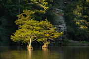 Paintery Prints - Scenic Beavers Bend Print by Kim Henderson