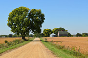 Illinois Barns Photo Prints - Scenic Journey Print by Tom Druin
