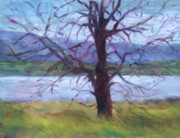 Quin Sweetman Paintings - Scenic Landscape Painting Through Tree - Spring Has Sprung - Color Fields - Original Fine Art by Quin Sweetman