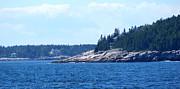 Lois Lepisto - Scenic Maine Coast