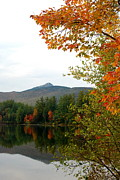 Fly Fishing Art Print Posters - Scenic New Hampshire Lake Poster by Eunice Miller