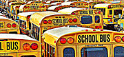 David Sanchez - School Bus Lot