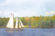 Sailboat Ocean Digital Art Prints - Schooner Castine Harbor Maine Print by Carol Leigh