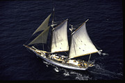 Wayne Oberparleiter Metal Prints - Schooner From the Air Metal Print by Wayne Oberparleiter