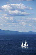 Sailboat Ocean Posters - Schooner on the bay Poster by Diane Diederich
