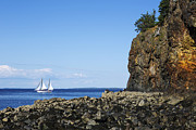 Acadia National Park Posters - Schooner sailing in the bay Poster by Diane Diederich