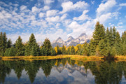 Refection Posters - Schwabacher Ponds in Grand Teton National Park Poster by Alex Cassels