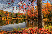 Terry Cervi - Science Lake Autumn