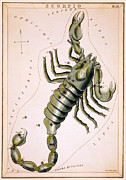 Star Map Posters - Scorpio Constellation  1825 Poster by Daniel Hagerman