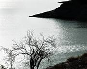 Arne Hansen - Scorpion Bay