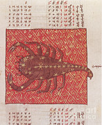 Science Source - Scorpius Constellation Zodiac Sign