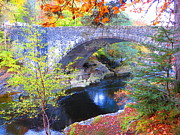 Scotland River Bridge Print by Mt Lee