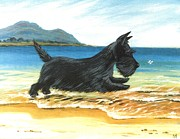 Scottish Terrier Puppy Prints - Scottie At Play Print by Margaryta Yermolayeva