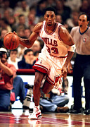 Bulls Photos - Scottie Pippen Poster by Sanely Great