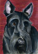 Puppy Mixed Media Originals - Scottish Terrier by Christine Winship
