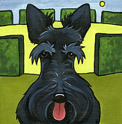 Black Dogs Framed Prints - Scottish Terrier Framed Print by Leanne Wilkes
