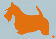 Cute Dog Digital Art Prints - Scottish Terrier Orange Print by Irina  March