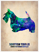 Scottish Terrier Framed Prints - Scottish Terrier Poster Framed Print by Irina  March