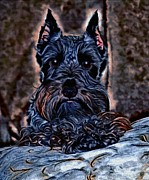 Scottish Terrier Digital Art - Scottish Terrier by Tisha McGee