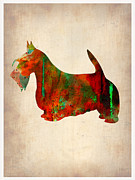Pet Dog Framed Prints - Scottish Terrier Watercolor 2 Framed Print by Irina  March