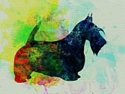 Scottish Terrier Puppy Prints - Scottish Terrier Watercolor Print by Irina  March