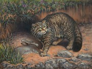 Wildcats Painting Framed Prints - Scottish Wildcat - Last of the Highland Tigers Framed Print by Cynthia House