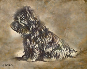 Breed Pastels Posters - Scotty Dog Poster by George Pedro