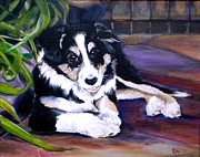Collie Painting Framed Prints - Scout Framed Print by Debi Pople