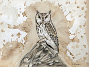 Heather Stinnett - Screech Owl