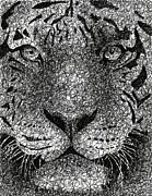 Scribble Tiger Print by Nathan Shegrud