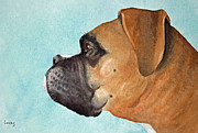 Mastiff Dog Paintings - Scuba by Jeff Lucas