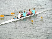 Sweeps Digital Art - Sculling Team on Palm River  by Buzz  Coe