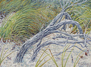 Sea Oats Framed Prints - Sculpted by the Wind Framed Print by Danielle  Perry