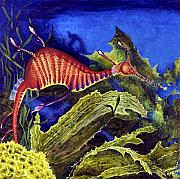 Seadragon Posters - Sea Dragon Poster by Mary Palmer