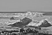 Sea Foam Framed Prints - Sea Foam BW Framed Print by Barbara Snyder