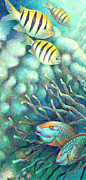 Angelfish Paintings - Sea Folk I - Sergeant Majors by Nancy Tilles