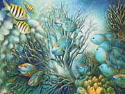 Angelfish Paintings - Sea Folk by Nancy Tilles