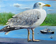 Oz Freedgood - Sea gull on alert