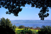 Thomas R Fletcher Framed Prints - Sea of Galilee from Mount of the Beatitudes Framed Print by Thomas R Fletcher