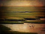 Sea Of Grass Print by Lianne Schneider