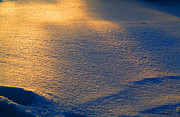 Winter Roads Photos - Sea Of Ice That Glistens by Tina M Wenger