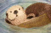 Otter Mixed Media Posters - Sea Otter Poster by Jacqueline Barden