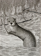 Jeanette K - Sea Otter
