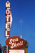Sea Route Framed Prints - Sea Shell Motel Film Image Framed Print by Matthew Bamberg