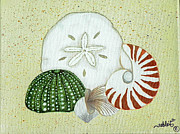 Atlantic Beaches Painting Prints - Sea Shells Print by Nanci Fielder