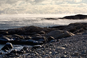 Brent L Ander Framed Prints - Sea-smoke at Schoodic Framed Print by Brent L Ander