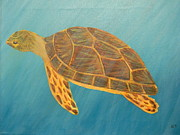 Sea Turtle Print by Karen Coats