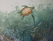 Fish Rubbing Posters - Sea Turtle Poster by Nancy Gorr