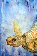 Tropical Fish Paintings - Sea turtle by Sol Arts